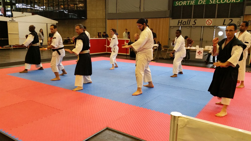 japan expo 2014 shorinji kempo