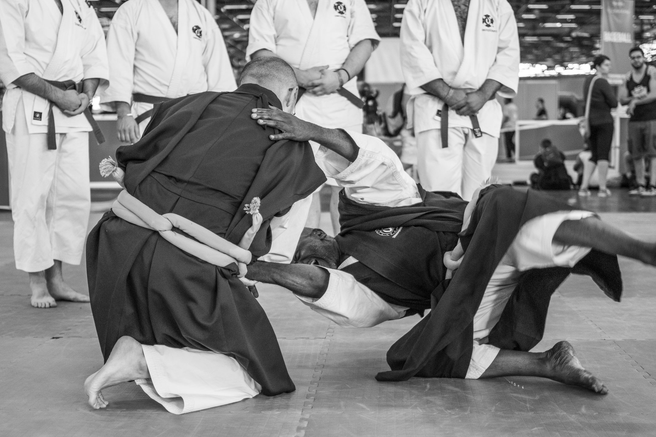 Japan expo 2015 shorinji kempo